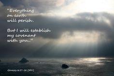 Genesis 6:17-18