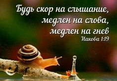 Motivation, Quotes, Quotations, Quote, Shut Up Quotes, Inspiration