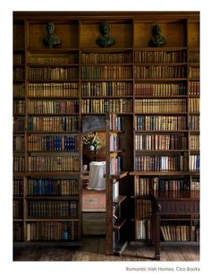 library/secret room.