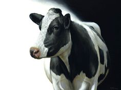 Sold | Aukje the Cow III, oil/canvas 24 x 32 inch (60 x 80 cm) © 2012 Klimas
