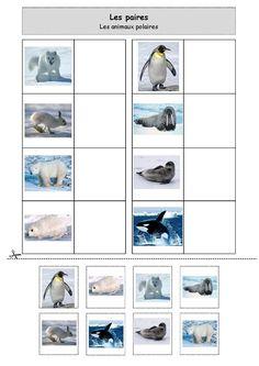 Les paires : les animaux polaires Artic Animals, Polo Norte, Animal Action, Montessori Materials, Winter Kids, Animal Crafts, Winter Theme, Preschool Activities, Montessori Kindergarten