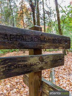 Hike the Appalachian Trail to Three Forks, a beautiful valley filled with crystal-clear trout streams and the tumbling Long Creek Falls waterfall in North Georgia