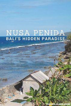 Nusa Penida: Your Ho