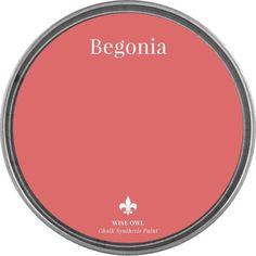 Coral Paint Colors, Paint Color Palettes, Paint Colors For Home, Coral Color Schemes, Wall Colors, House Colors, Color Combos, Begonia, Above And Beyond