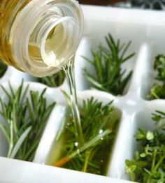Harvest fresh herbs...place in ice-cube trays...pour olive oil over and freeze to use later. How-tos at our site.