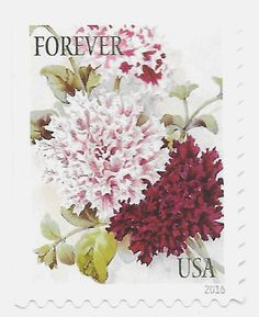10 Unused Petunia Forever Postage Stamps // Vintage Botanical Art Stamps // Mail Invitations for Weddings | Save the Date | Spring Flowers by TreasureFox on Etsy