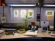 office cubicle decorating: thrifty ways to make your cubicle cozy