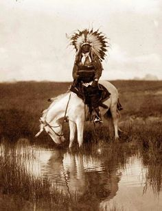 You are viewing an impressive image of Valley Rosebud, a Cheyenne Chief. It was taken in 1905 by Edward S. The picture shows a Cheyenne Indian Warrior, wearing a feather head dress, on horseback. The horse is drinking water from a small stream . Native American Photos, Native American Tribes, Native American History, American Indians, American Symbols, American Women, Old Pictures, Old Photos, Indian Pictures