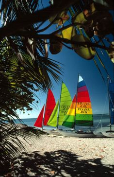 Hobie Cat sailboats on Smathers Beach: Key West, Florida (von State Library and Archives of Florida)