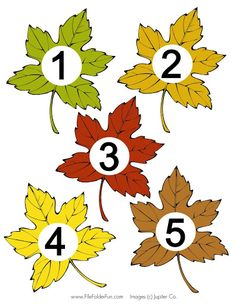 Igraem 4 - Aleiga V. Autumn Crafts, Nature Crafts, Autumn Nature, Autumn Leaves, Diy And Crafts, Crafts For Kids, Paper Crafts, Color Games, Leaf Logo