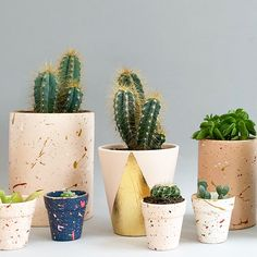 We hand paint all of our ceramic planters with waterproof paint, and add details of gold leaf.  The splatter paint pots are inspired by the terrazzo trend.