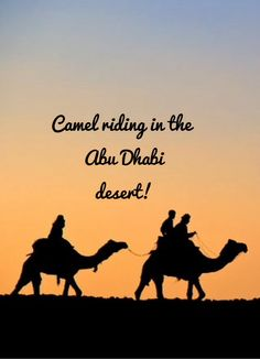 Ride a camel in the desert of Abu Dhabi