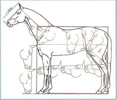 Not sure if this would apply to all horse breeds, but it is a very interesting concept. Will have to take a closer look at different horses to see if this is an accurate measurement. Horse Drawings, Animal Drawings, Art Drawings, Drawing Art, Animal Sketches, Art Sketches, Horse Drawing Tutorial, Horse Sketch, Horse Anatomy