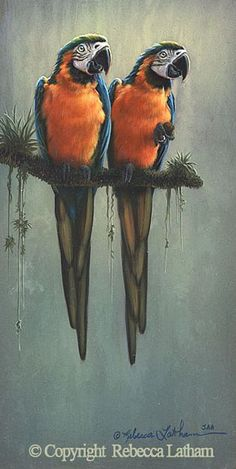 Watercolor - Two of a Kind - Blue and Gold Macaws-Blue and Gold MacawsbyRebeccaLatham