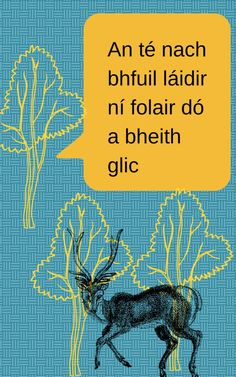 An té nach bhfuil láidir ní folair dó a bheith glic (He is not strong must be sly) Finnegans Wake, Gaelic Words, Welsh Language, Irish Proverbs, Erin Go Bragh, European Languages, Study Motivation, Poster Making, Beautiful Words