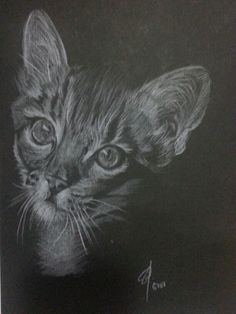 Pussy White pencils on linen black paper A4
