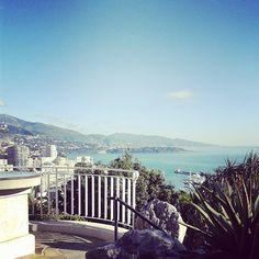 #JardinExotique Trop beau by lafittepierre from #Montecarlo #Monaco