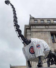 Field Museum finally gets to rock a Cubs Jersey!
