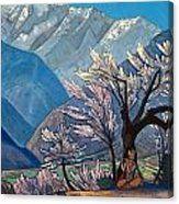 Krishna by Nicholas Roerich Amrita Sher Gil, Nicholas Roerich, Oil On Canvas, Canvas Prints, Krishna, Art Gallery, Design Inspiration, Museum, Painting