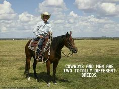 cowboy in Texas Cowboy Quotes, Horse Quotes, Dog Quotes, Farm Quotes, Dumb Jokes, Funny Memes, Hilarious, Funny Quotes, Horse Pictures