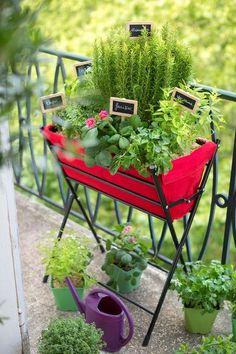 Bac jardinière pour balcon ou petite terrasse