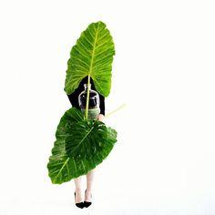 green leaves geronimoballoons