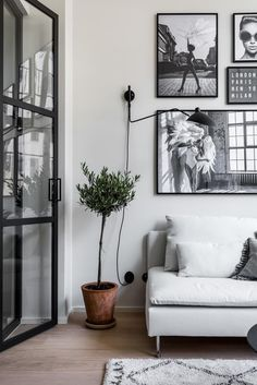 Gray black and white decor