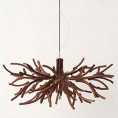Entry way chandelier-anthropologie