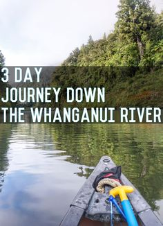 Exploring the scenic beauty of the Whanganui River in New Zealand Great Walks, Canoe Trip, New Zealand, Exploring, Road Trip, Journey, River, My Love, News