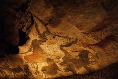 Free images about Animals In The Caves Of Lascaux - MobDecor High Quality Wallpapers, Live Wallpapers, Lascaux Cave Paintings, Science Today, Antelope Canyon, Pet Birds, Free Images, Caves, Animals