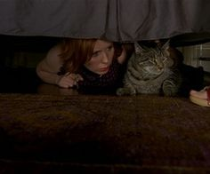 mirandas cat in sex and the city in Gosford
