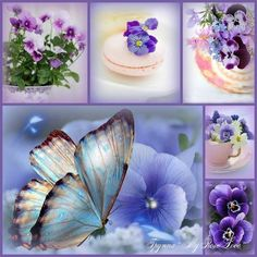 Love Collage, Color Collage, Beautiful Collage, Beautiful Butterflies, Beautiful Flowers, Collages, Affinity Photo, Decoupage Paper, All Things Purple