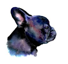 awesome frenchie watercolor... i love when my frenchie's ears do this!