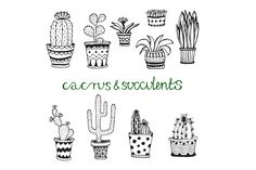 Doodle cactus set Vector art by Worldion on Creative Market