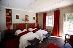 Big five Safari close to Cape Town. Inverdoorn and Iziba Safari Lodge. Game Reserve, Luxury Accommodation, Cape Town, Safari, Bed, Furniture, Home Decor, Decoration Home, Stream Bed