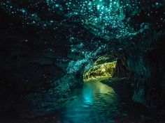 Leave it to New Zealand to make even worms look beautiful. The Waitomo Caves hold thousands of bioluminescent larvae that leave long strings of mucus (sounds gross, looks dazzling) and glow like a subterranean Milky Way.