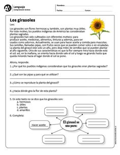 Lenguaje ›› Comprensión lectora ›› y básico Learn Spanish Free, Learning Spanish For Kids, Spanish Teaching Resources, Spanish Language Learning, Spanish Lessons, Spanish Games, Learning Sight Words, Spanish Worksheets, Learning Quotes