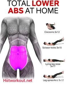 Lower Belly Workout, Oblique Workout, Full Body Workout At Home, At Home Workouts, Gym Workout For Beginners, Gym Workout Tips, Fitness Workout For Women, Workout Videos, Lower Abs