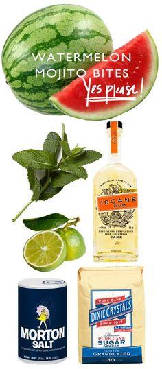 Watermelon Mojito Bites via Ashley Brooke Designs