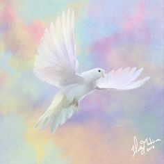 Print -High Quality- Oil Pastel and Oil painting- Fly me to Heaven- choose your size Art Print High Quality Oil Pastel and Oil by BlueBarnFiber on EtsyArt Print High Quality Oil Pastel and Oil by BlueBarnFiber on Etsy Art Prophétique, Dove Flying, Dove Pictures, Funny Pictures, Prophetic Art, White Doves, Pretty Pastel, Christian Art, Pastel Colors