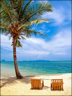 Tropical Island Beach Paradise for Two-Dominican Republic Beach Pink, Ocean Beach, Summer Beach, Summer Time, Summer Picnic, Dream Vacations, Vacation Spots, Places To Travel, Places To Go