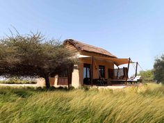 Sir Bani Yas, Rated One of the Best New Hotels in the World