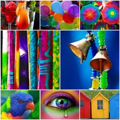 Wie is er niet bang voor een beetje kleur? In de regenboog vind je alle kleuren van de wereld. Kleurrijk feesten!   Pick your colour from the rainbow for a cheerful party.