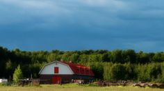 These old barns are good for more than reclaimed wood and weddings | Grist