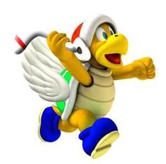 Flying Boomerang Bro