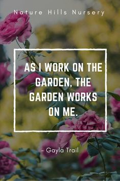 It's true, gardening is the best therapy!  #gardenquotes #inspirationalquotes