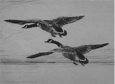 Image result for etching goose