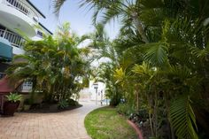 Mardi Gras Resort - The Resort - Affordable Broadbeach Accommodation