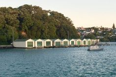 Boat sheds Auckland Boat Shed, Auckland, Homeland, Sheds, New Zealand, Mansions, House Styles, Houses, Image