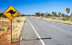 Les voitures autonomes de Volvo ont un problème avec les kangourous